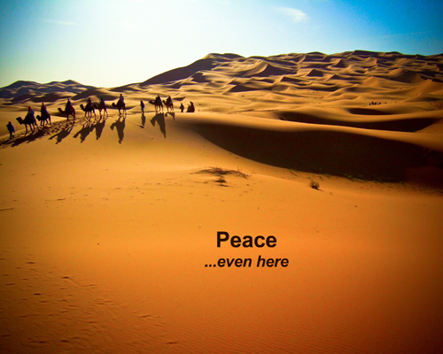 WestSaharaPeace