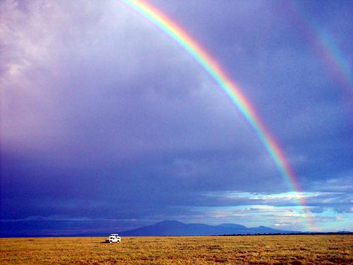 rainbow.serengeti.peron