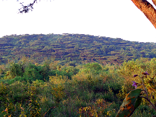 The view from my tent just below the crater rim.