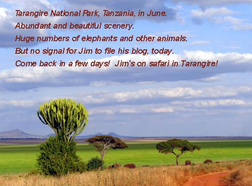 TarangireLandscape.655.jun13