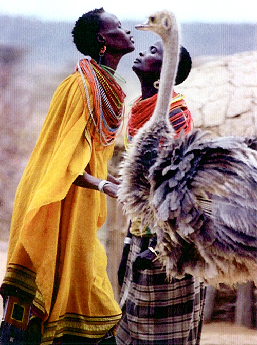 9Jul.dancers_ostrich.samburu