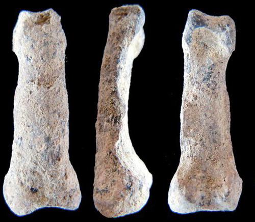 oldesthandbone
