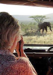 Caroline Barrett photographing elephant.