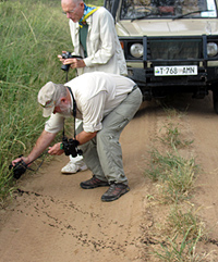 Bill Vogt & Jim Pease photograph safari ants.
