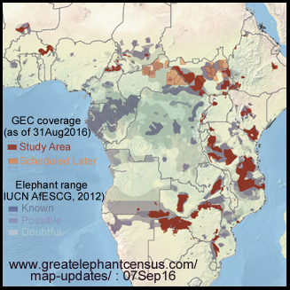 greatelephantcensus-coverage-blog