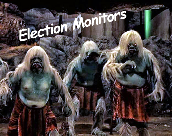 election-monitors