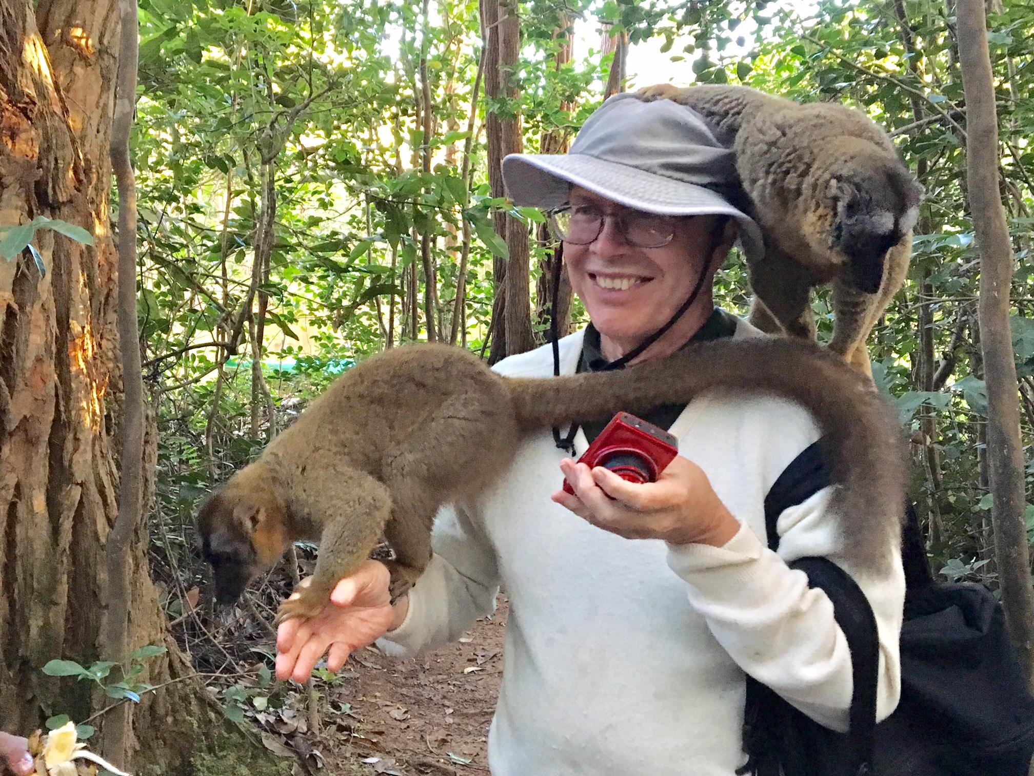 Lemurs Don't Understand Selfies