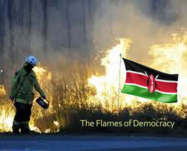 flamesofdemocracy