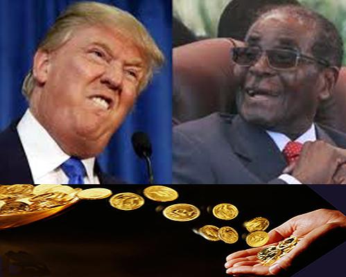 money to mugabe
