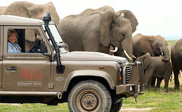 elephanttrust